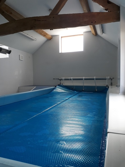 pool cover SF